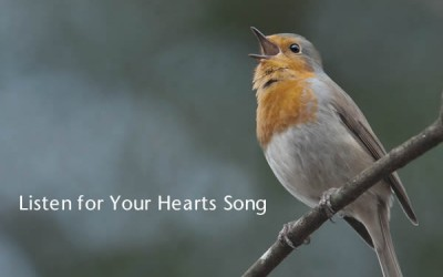 listen-for-your-hearts-song